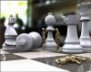 Chess anyone avatar 23403