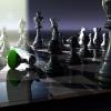 Chess game avatar 100x100 14775